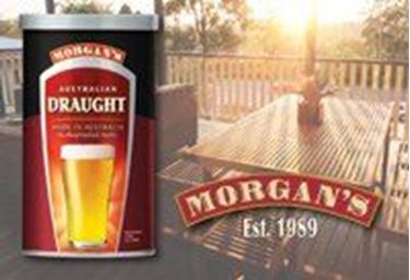 Picture of Morgans Australian Draught