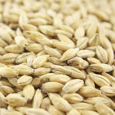 Picture of Joe White Pilsner Malt 100 g