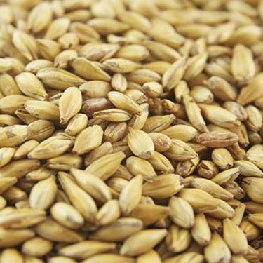Picture of Joe White Middium Crystal Malt 10 g