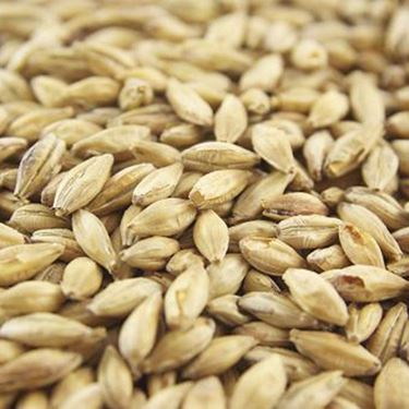 Picture of Joe White Dark Crystal Malt 10 g