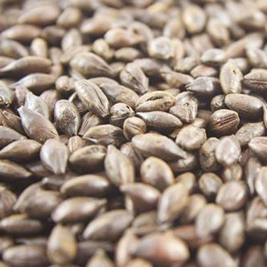 Picture of Joe White Roasted Barley 10 g