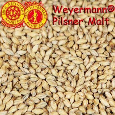 Picture of German Weyermann Cara Pilsner Malt 10 g