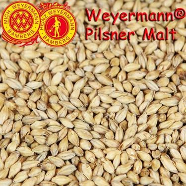 Picture of German Weyermann Pilsner Malt 100 g