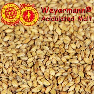 Picture of German Weyermann Acidulated Malt 10g